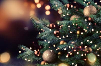 festival of trees what you need to know - What Is Open On Christmas Eve