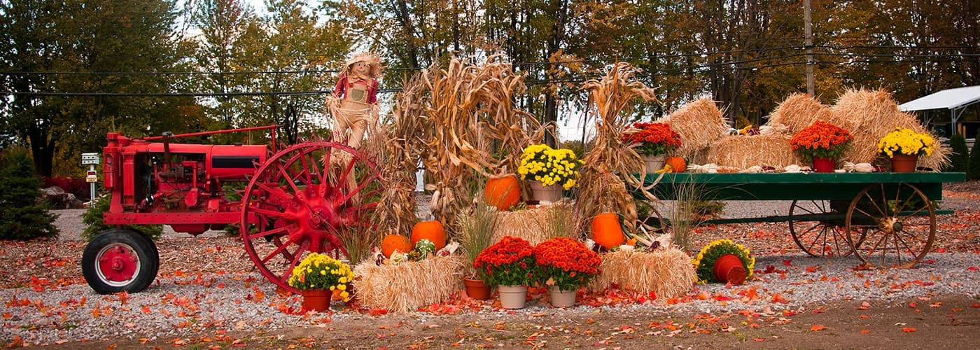 Tractor with Fall Decorations