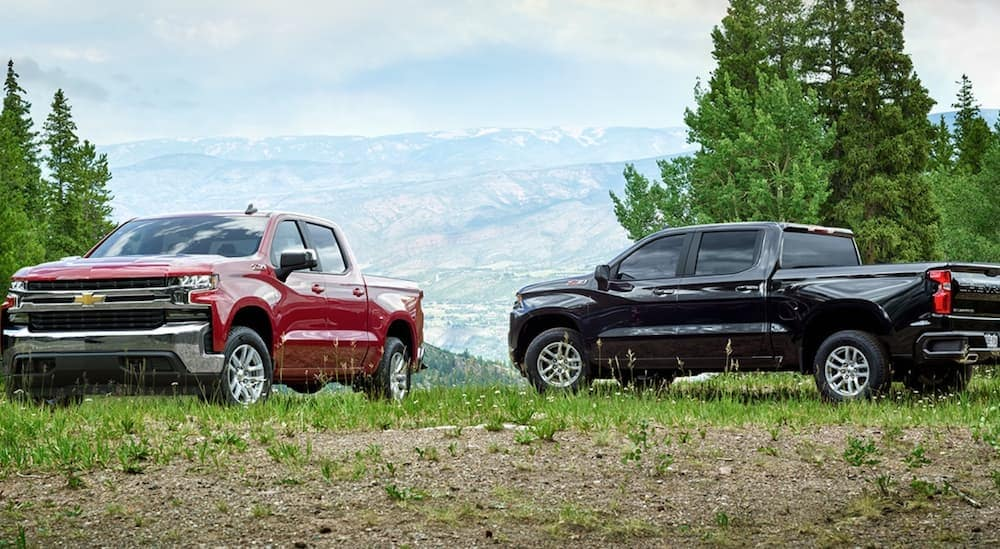 Two 2020 Chevy Silverado are parked on a grassy hill outside of Albany, NY.