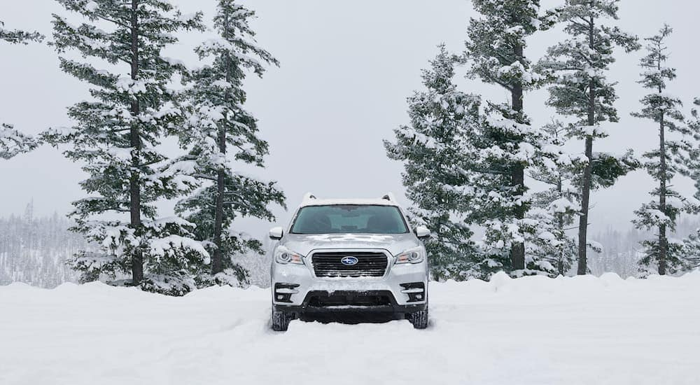 A white Subaru Ascent is driving on a snowy road near Albany, NY.