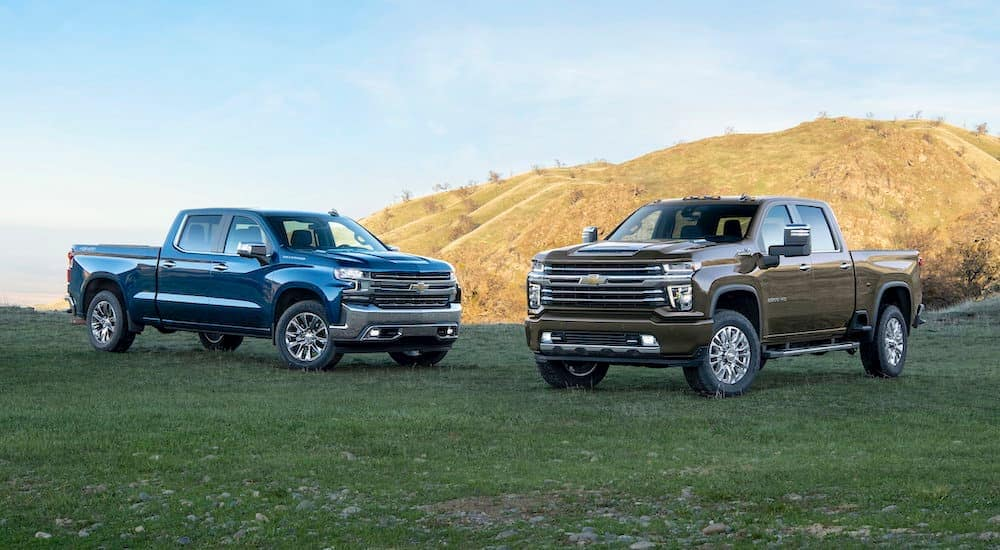 A blue 2019 Chevy Silverado 1500 is next to a grey 2020 Chevy Silverado 2500HD with a hill behind them.