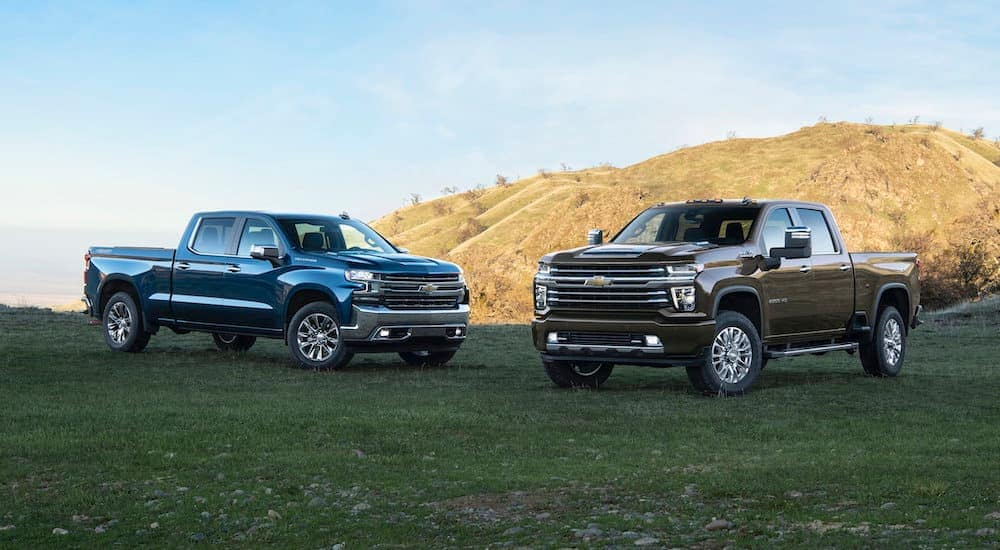 A blue 2019 Chevy Silverado 1500 is next to a dark grey 2020 2500HD in front of a hill.