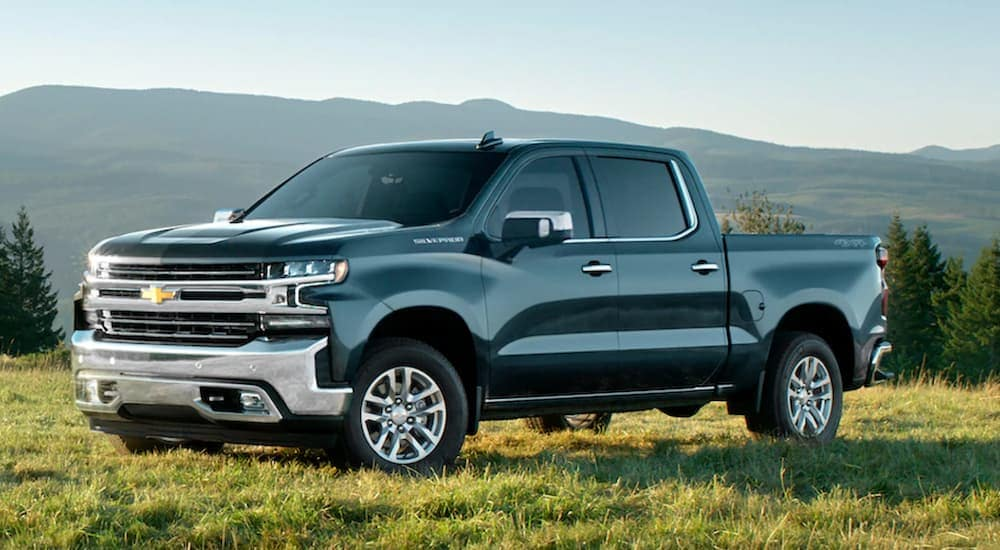 A dark grey 2020 Chevy Silverado 1500, which is popular among trucks for sale in Albany, NY, is parked on grass with mountains in the distance.