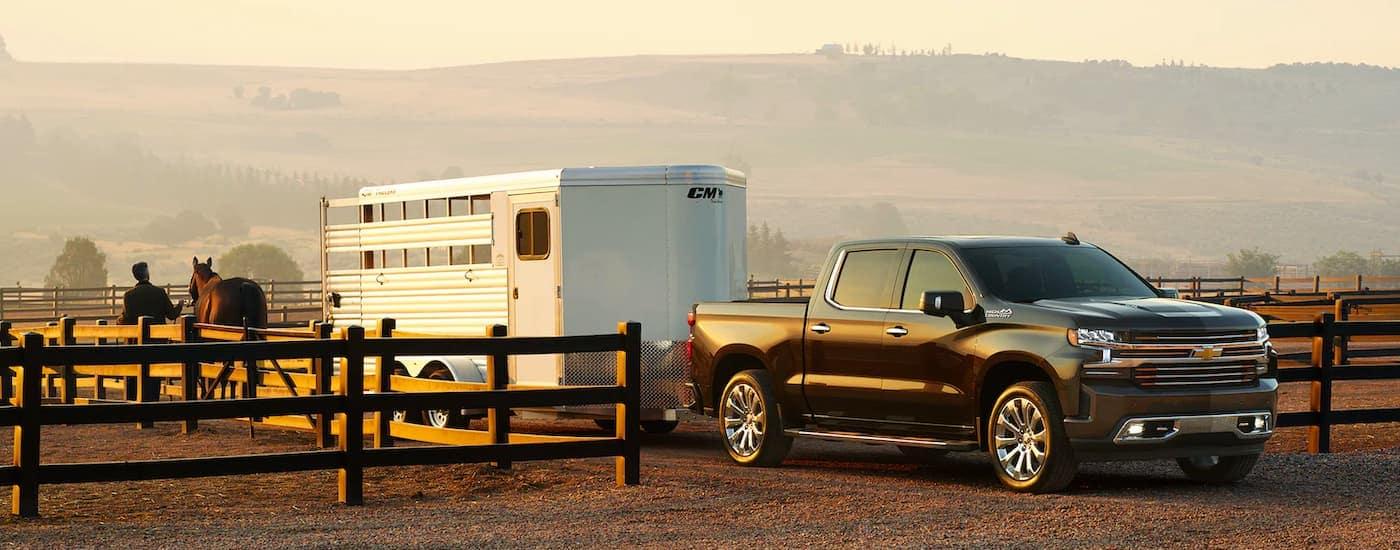 A black 2021 Chevy Silverado 1500 is towing a horse trailer down a fenced path.