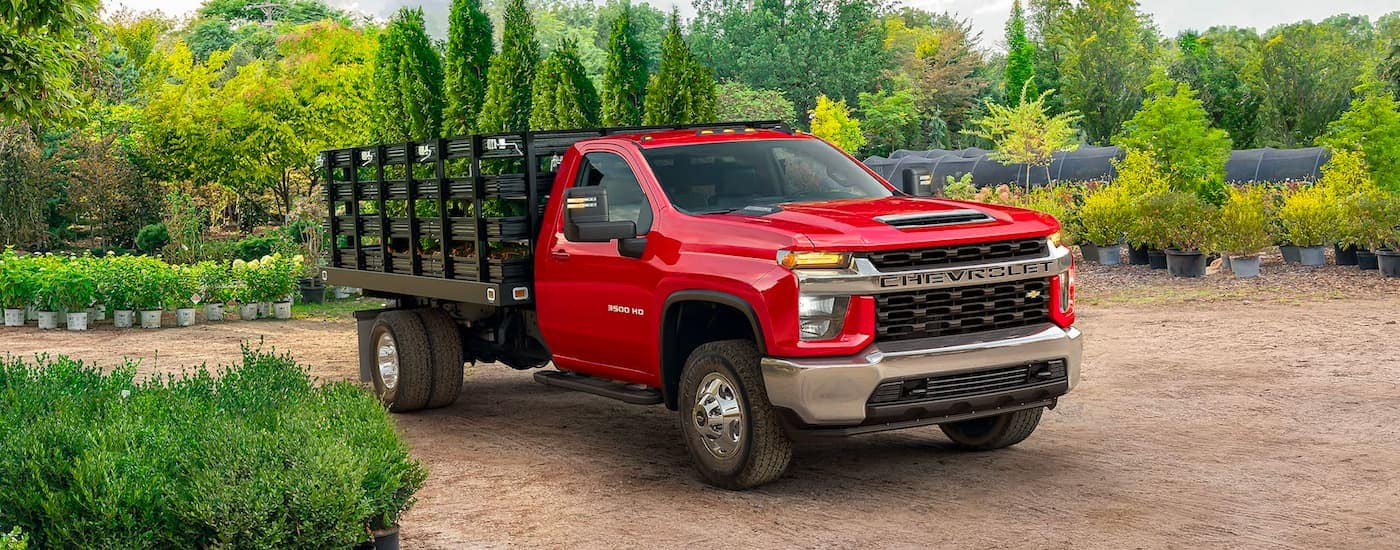 A red 2021 Chevy Silverado 3500 HD Chassis Cab is parked in a nursery with trees in the bed.