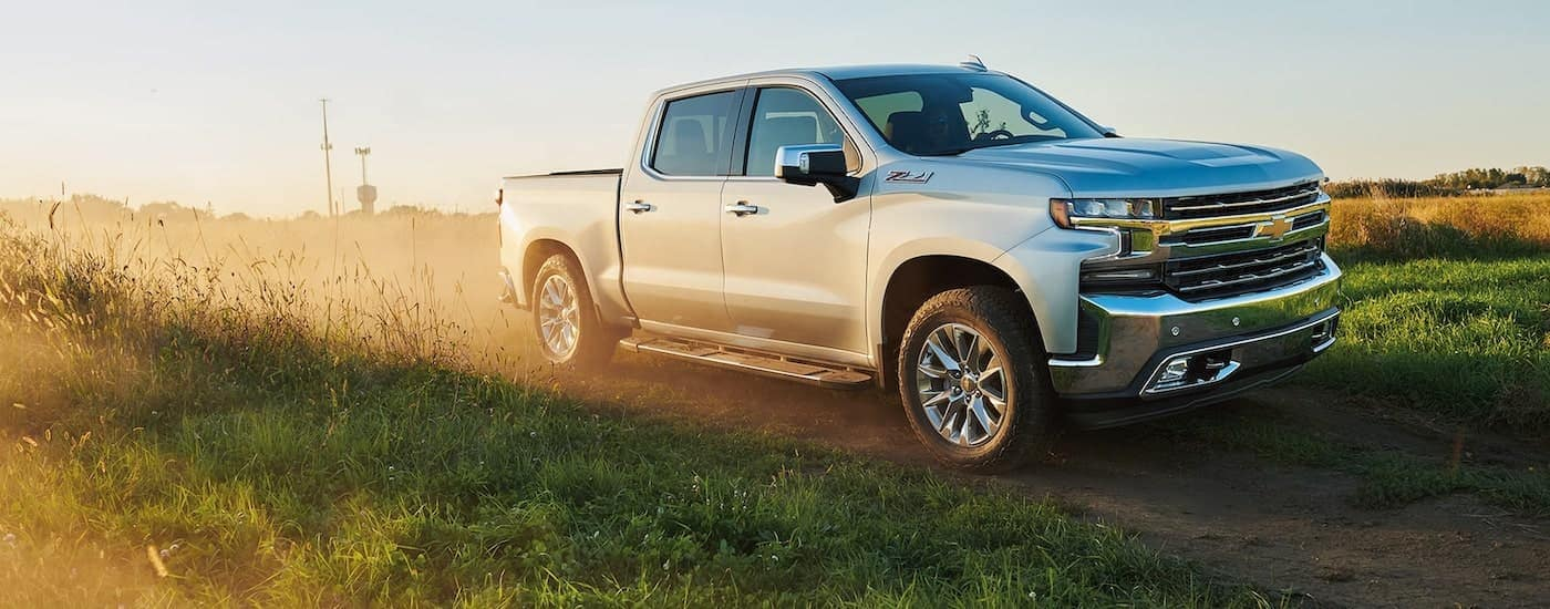 A popular model for used Silverado sales in Albany, a silver 2020 Chevy Silverado 1500 Z71, is shown driving down a dirt path past a field.