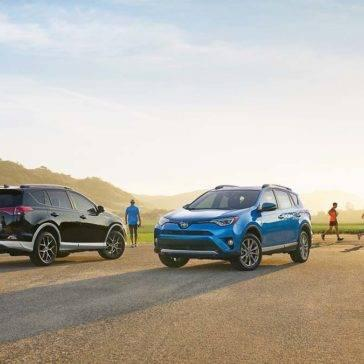 Group-of-Friends-Hanging-Out-By-Toyota-RAV4s