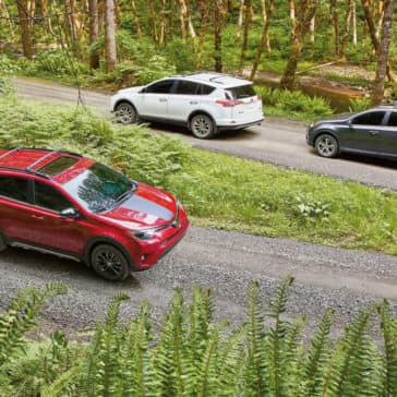 2018 Toyota RAV4 XLE, Adventure, and Limited
