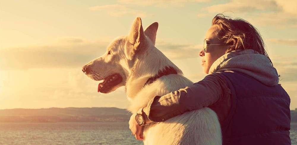 Girl holding dog looking toward sunset