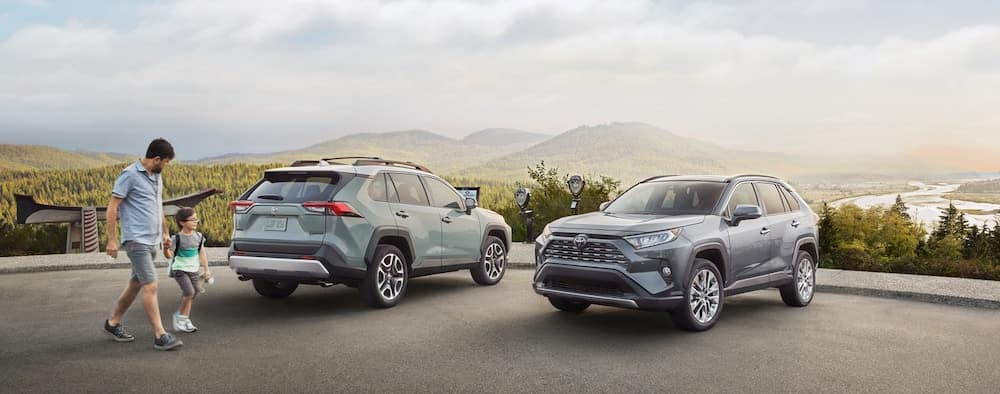 2019 Toyota RAV4 Limited models