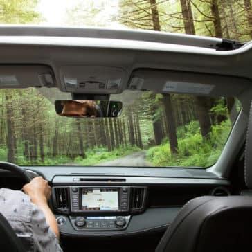 2018 Toyota RAV4 Interior Dash