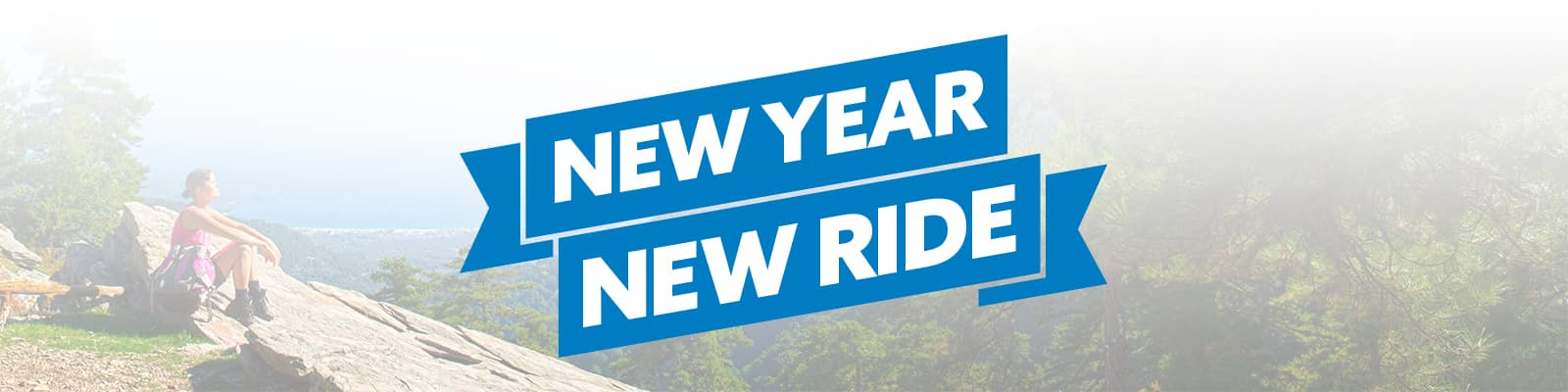 New Years Honda Specials