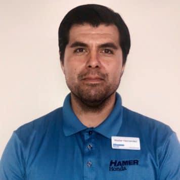 Walter Hernandez