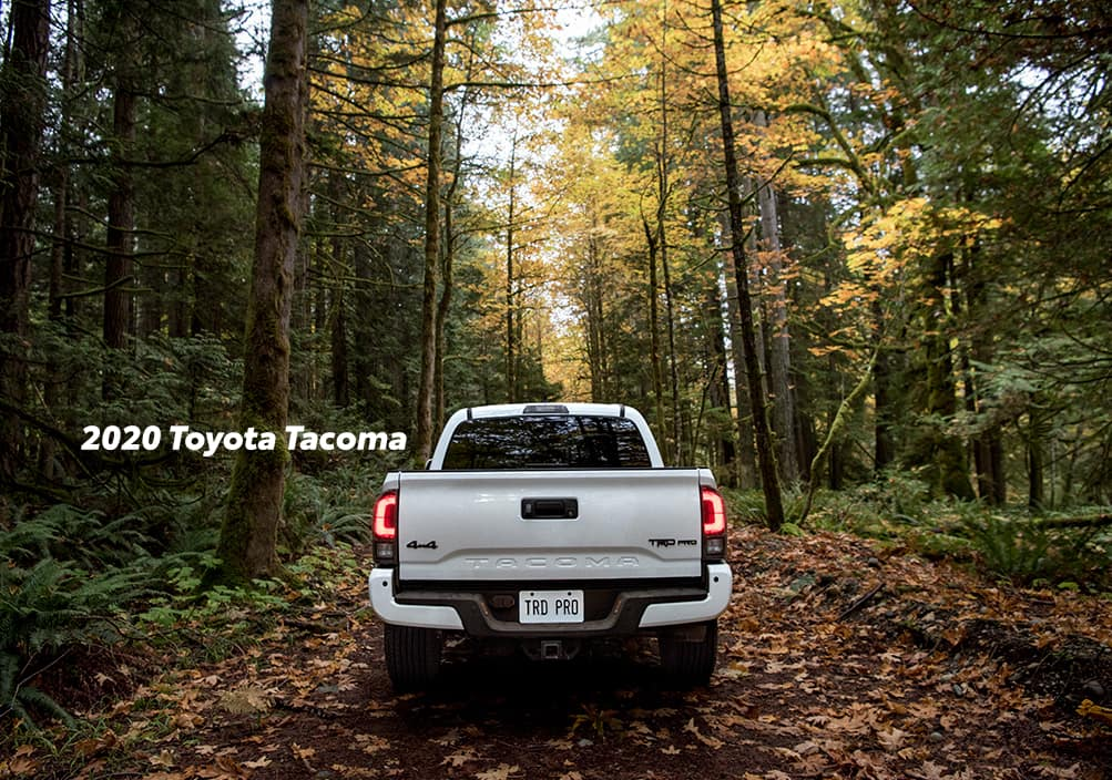 Comparison of the Toyota Tacoma vs. Tundra trucks at Lancaster Toyota of East Petersburg | White 2020 Toyota Tacoma in the wood