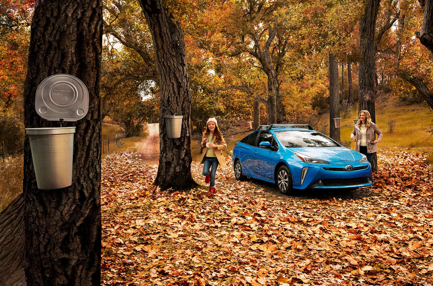 A Toyota Hybrid for Everyone: Quick Facts at Lancaster Toyota | 2020 prius hybrid in autumn
