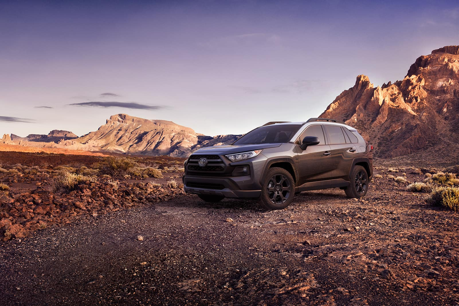 Quick Comparison of the 2020 Toyota RAV4 vs. the Honda CR-V at Lancaster Toyota | grey 2020 rav4 parked on top of the mountain