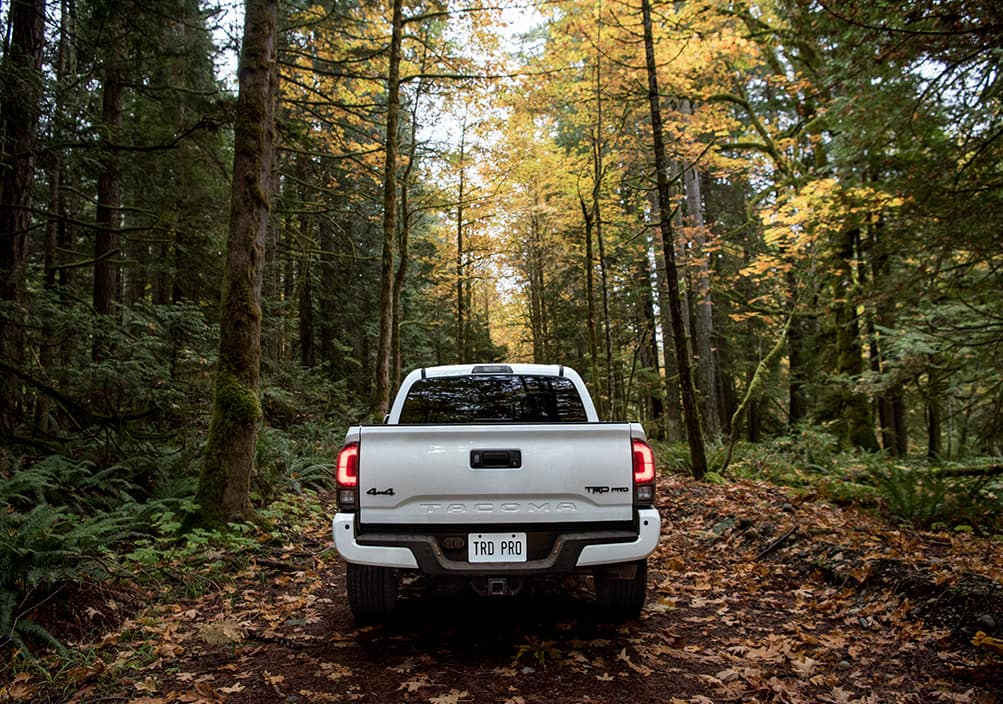 Model Features of the 2020 Toyota Tacoma at Lancaster Toyota in East Petersburg | the back of the 2020 tacoma