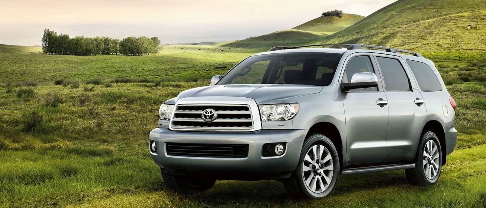 2017 Toyota Sequoia Parked