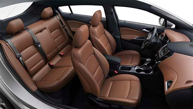 Interior & Exterior Features