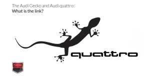 The Audi Gecko and Audi quattro - What is the link
