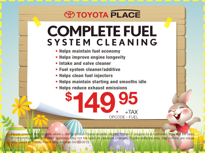 Complete Fuel System Cleaning $149.95 + tax